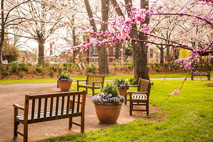 The UGA Hotel features charming gardens and courtyards and lovely old trees