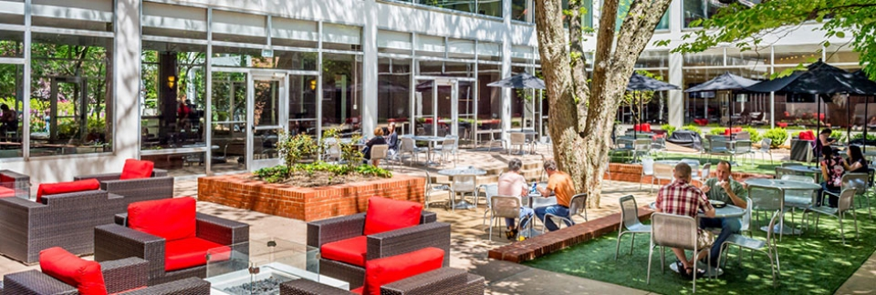 UGA Hotel's Pecan Tree Courtyard is a relaxing outdoor dining space